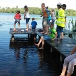 Lekcja o dmuchawcach, kijankach i łabędziu